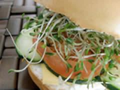 Bagel vegetariano