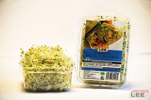 Germinado de brócoli con alfalfa