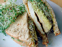 Sandwich de pollo con aguacate y alfalfa